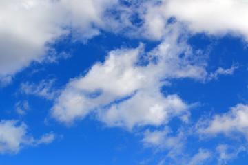 texture cloud the summer sky