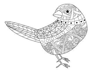 Sparrow coloring book vector for adults