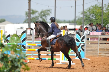 The rear view on the rider overcomes the obstacle on the horse jumping competition