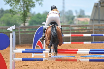 The side view on the rider overcomes the obstacle on the horse jumping competition