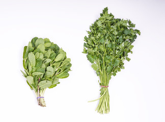 Mint and parsley on white background