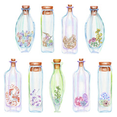 Collection of icons, set of romantic and fairytale watercolor bottles with forest branches, succulents, berries and shells inside, hand drawn isolated on a white background