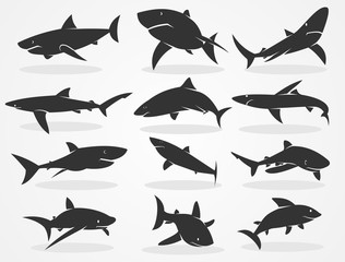 Set of silhouettes of sharks isolated on a black background