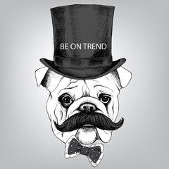 The image Bulldog portrait with mustache and in the bowler hat, with a bow. Vector illustration.