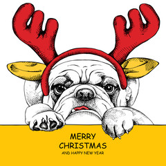 The image dog Bulldog portrait in mask Santa's antler reindeer. Vector illustration.