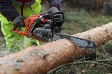Cięcie drewna pilarką łańcuchową spalinową
