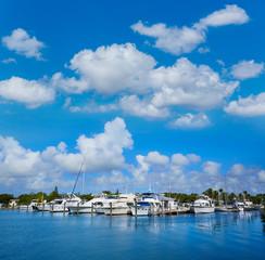 Fototapete - Key West Florida marina Garrison Bight Florida