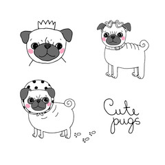 Cute Pugs. Dogs.