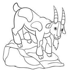 Coloring pages. Farm animals. Cute billy goat.