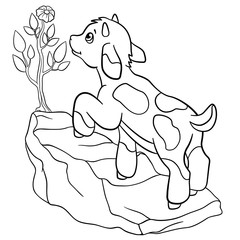 Coloring pages. Farm animals. Little cute goatling looks at the flower