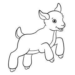 Coloring pages. Farm animals. Little cute goatling jumps.