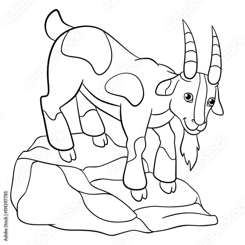 coloring pages farm animals cute billy goat stock image and royalty free vector files on. Black Bedroom Furniture Sets. Home Design Ideas