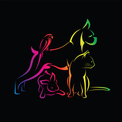 Vector group of pets - Dog, cat, bird, rabbit, isolated on black