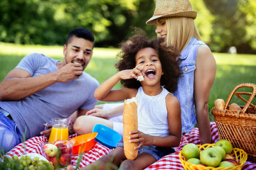 Family enjoying picnic outing