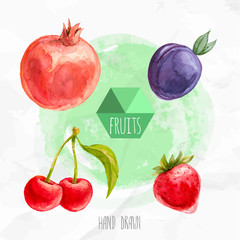 Watercolor hand painted fruit set. Eco food illustration. Watercolor green background.Cherries, strawberry, pomegranate and plum. Summer fruits.