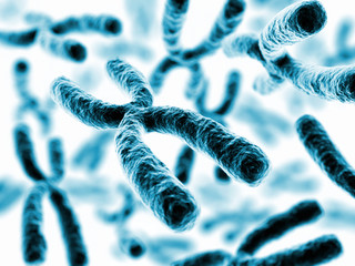 X chromosomes - 3d render