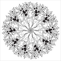 Hand drawing floral holly mandala, zentangle element.