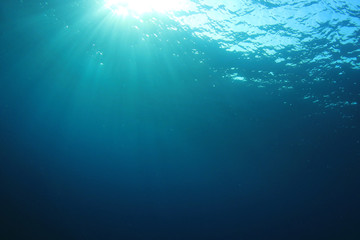 Underwater ocean background in sea with sunlight