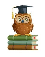 Clever owl sitting on books education