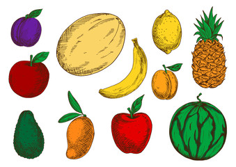 Healthy and fresh fruits colored sketch icons