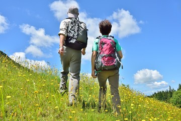 青空の草原を歩く