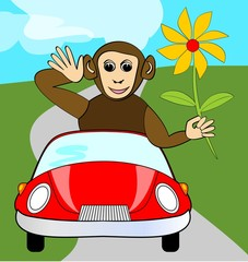 Funny winking monkey with yellow flower in red car