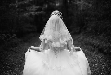 Photo of the bride from the back, behind the wedding dress on a