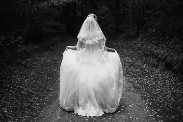 Photo of the bride from the back, wedding dress on a girl, the b