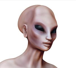 Hybrid alien woman side view on white