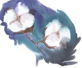 cotton flowers watercolor illustration