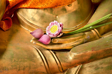 Lotus in hand image of buddha
