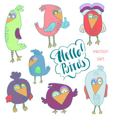 Cartoon set of funny colourful bird. Little cute birds isolated. Vector illustration collection