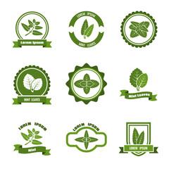 Wall Mural - Mint leaves vector logos, label, emblems set
