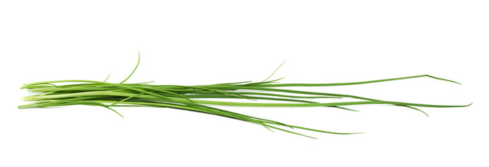 Green onion scallions isolated