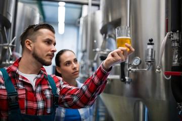 Brewers testing beer