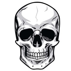 Skull Vector Illustrations