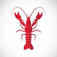 Vector image of an lobster design on white background., Lobster