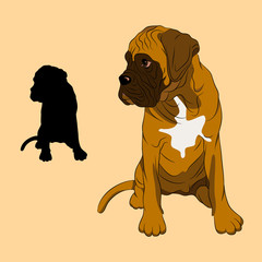 boxer dog puppy realistic vector illustration black silhouette