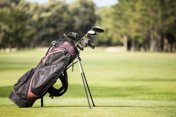 Filled golf bag with golf club