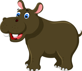 cute hippo cartoon for you design