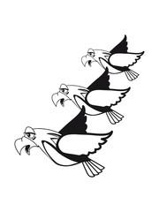 Bird fly formation fun