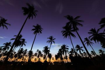 Закат в Као Лаке.