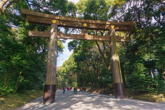 Tokyo, Japan - January 26, 2016: Meiji Jingu Shrine yoyogi park