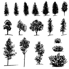 Set of hand drawn sketch trees on white background