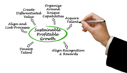 Wall Mural - Diagram of Sustainable Profitable Growth