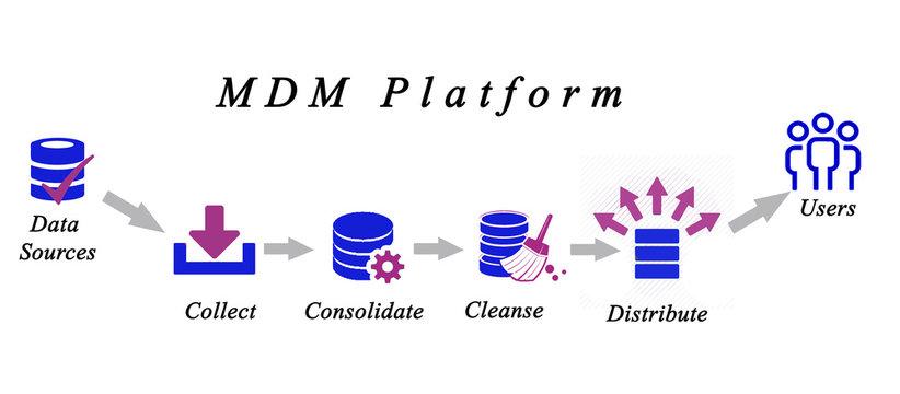 Diagram of Master Data Management
