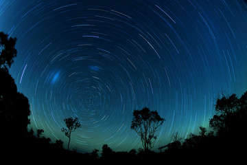 Australia Landscape : Star trails in Brisbane