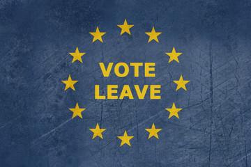 Wall Mural - Vote leave European flag