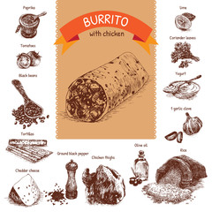 Vector illustration of burrito ingredients