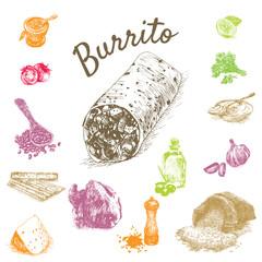 Vector illustration of burrito ingredients